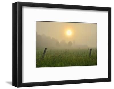 Canada, Ontario, Bourget. Farm field at sunrise in fog.-Jaynes Gallery-Framed Photographic Print