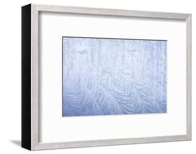 Frost on automobile silver fender-Darrell Gulin-Framed Photographic Print