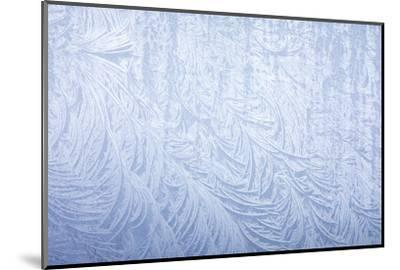 Frost on automobile silver fender-Darrell Gulin-Mounted Photographic Print
