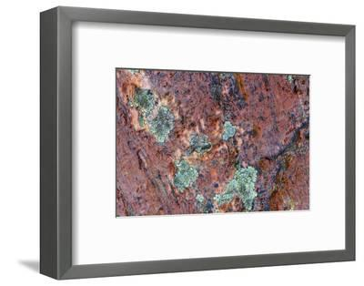 Large naturally polished rock with lichen, Lower Deschutes River, Central Oregon, USA-Stuart Westmorland-Framed Photographic Print