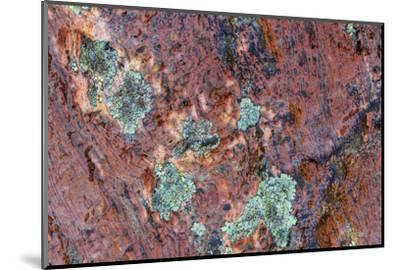 Large naturally polished rock with lichen, Lower Deschutes River, Central Oregon, USA-Stuart Westmorland-Mounted Photographic Print