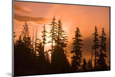 Sunrise scenic views near Timberline lodge, Lolo Pass, Mt. Hood Wilderness Area, Oregon, USA-Stuart Westmorland-Mounted Photographic Print