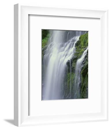 OR, Willamette NF. Three Sisters Wilderness, Lower Proxy Falls displays multiple cascades-John Barger-Framed Photographic Print