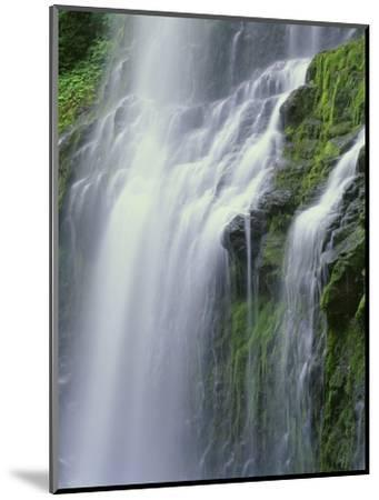 OR, Willamette NF. Three Sisters Wilderness, Lower Proxy Falls displays multiple cascades-John Barger-Mounted Photographic Print