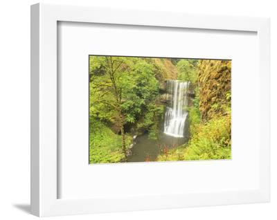 Trail of Ten Falls, Silver Falls State Park, near Silverton, Oregon-Stuart Westmorland-Framed Photographic Print