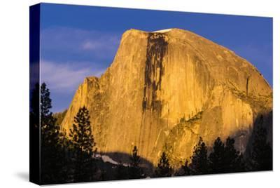 Evening light on Half Dome, Yosemite National Park, California, USA.-Russ Bishop-Stretched Canvas Print