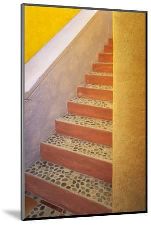 Mexico, Costalegre. Colorful stone stairs.-Jaynes Gallery-Mounted Photographic Print