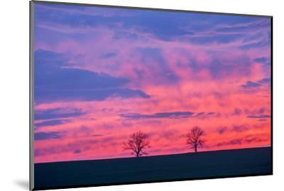 Sunset. Marion County, Illinois.-Richard & Susan Day-Mounted Photographic Print
