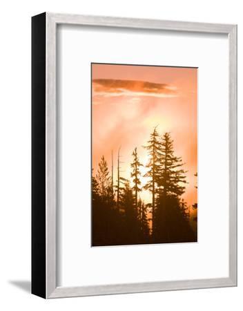 Sunrise scenic views near Timberline Lodge, Lolo Pass, Mt. Hood Wilderness Area, Oregon, USA-Stuart Westmorland-Framed Photographic Print