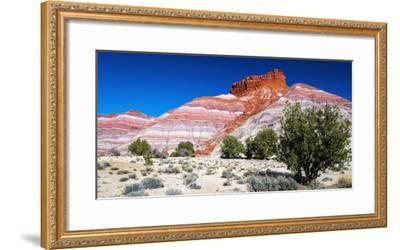 Evening light on the Cockscomb, Grand Staircase-Escalante National Monument, Utah, USA-Russ Bishop-Framed Photographic Print
