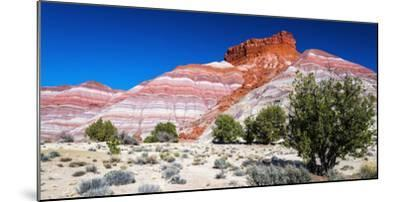 Evening light on the Cockscomb, Grand Staircase-Escalante National Monument, Utah, USA-Russ Bishop-Mounted Photographic Print