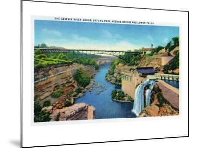 Rochester, NY - Genesee River Gorge, Park Avenue Bridge, Lower Falls View-Lantern Press-Mounted Art Print