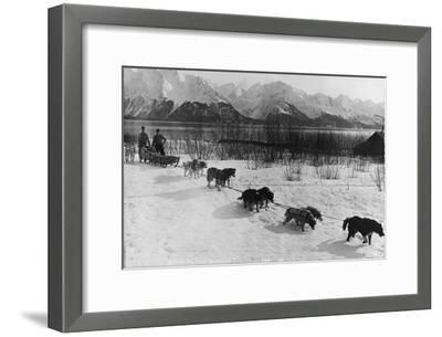 Dog Team Photograph - Alaska-Lantern Press-Framed Art Print