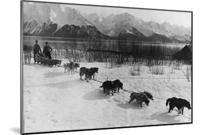 Dog Team Photograph - Alaska-Lantern Press-Mounted Art Print