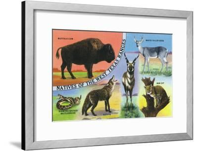 Texas - View of West Texas Natives: Buffalo, Coyote, Rattlesnake, Bob Cat, Antelope, Deer, c.1943-Lantern Press-Framed Art Print