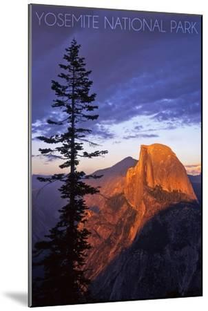 Yosemite National Park, California - Half Dome and Pine Tree-Lantern Press-Mounted Art Print