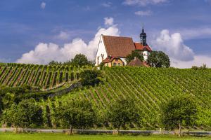 Germany, Bavaria, Lower Franconia, Mainfranken, Volkach, Pilgrimage Church Maria in the Vineyard by Udo Siebig
