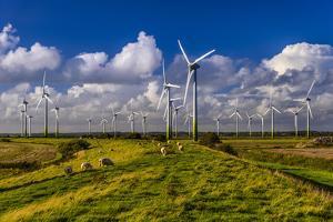 Germany, Schleswig-Holstein, North Frisia, North Frisian Marsh, Breklum by Udo Siebig