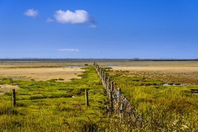 Germany, Schleswig-Holstein, North Frisia, Peninsula North Beach, the West
