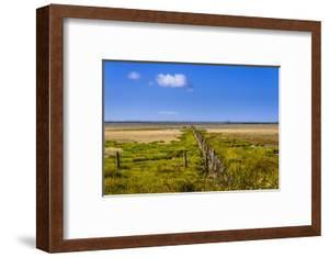 Germany, Schleswig-Holstein, North Frisia, Peninsula North Beach, the West by Udo Siebig