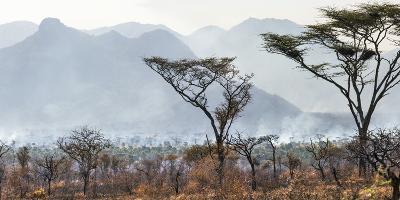 Uganda, Kidepo. the Deliberate Burning of Tall Grass Takes Place Soon after the Rainy Season-Nigel Pavitt-Photographic Print
