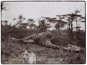 Ugigi, Belgian Congo, c.1910