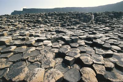 UK, Northern Ireland, County Antrim, Giant's Causeway, Basaltic Prisms--Giclee Print
