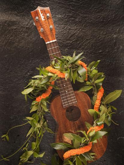 Ukulele, Hawaii-Douglas Peebles-Photographic Print