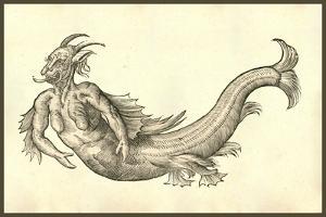 Monstrosus Marinus Daemoniforme by Ulisse Aldrovandi