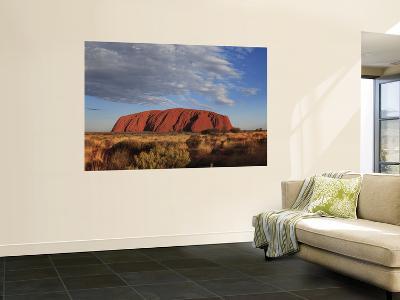 Uluru-Angus Oborn-Wall Mural