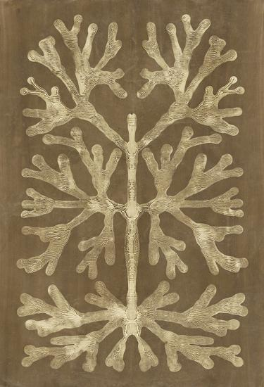 Umber Curiosities I-Renee W^ Stramel-Art Print