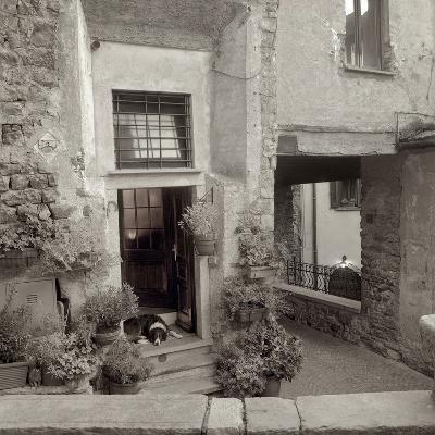 Umbria #28-Alan Blaustein-Photographic Print