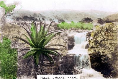 Umlaas Falls, South Africa, C1920S--Giclee Print