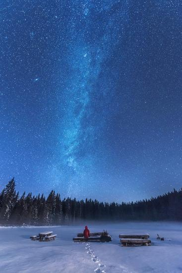 Under the Starry Night-Ales Krivec-Photographic Print