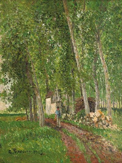 Undergrowth at Moret, 1902-Camille Pissarro-Giclee Print