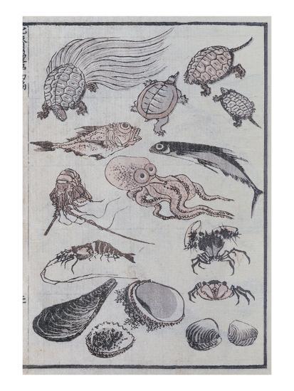 Undersea Creatures, from a Manga (Colour Woodblock Print)-Katsushika Hokusai-Giclee Print
