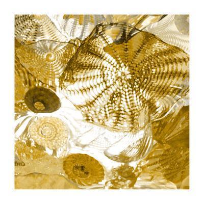 https://imgc.artprintimages.com/img/print/underwater-perspective-in-gold_u-l-f88q0n0.jpg?p=0