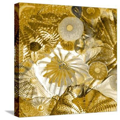 Underwater Perspective in Gold-Charlie Carter-Stretched Canvas Print