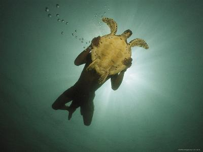 Underwater View of Swimmer and Turtle Silhouetted against the Sun-Nicolas Reynard-Photographic Print