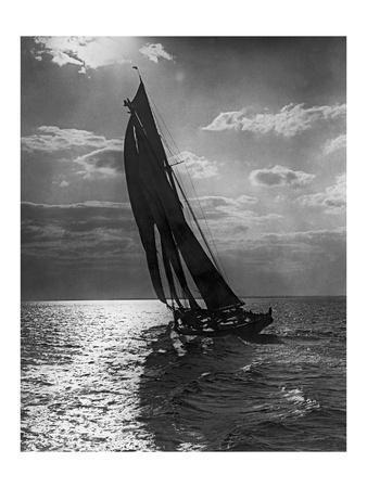 Sail Boat 3