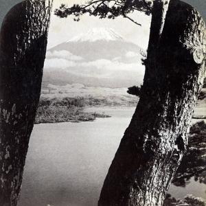 Mount Fuji, Seen from the Northwest, Through Pines at Lake Motosu, Japan, 1904 by Underwood & Underwood