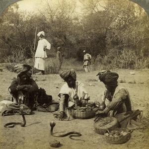 Snake Charmers, Delhi, India by Underwood & Underwood