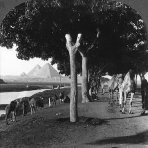 The Road to the Pyramids, Giza, Egypt, 1905 by Underwood & Underwood