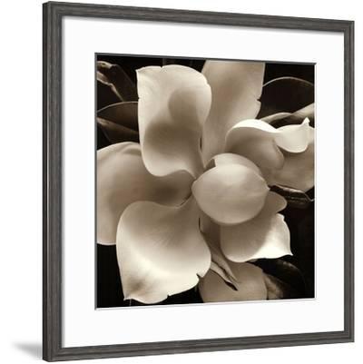 Unfolding IV-Carol Elizabeth-Framed Art Print