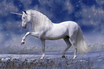 https://imgc.artprintimages.com/img/print/unicorn-80_u-l-q10pg7q0.jpg?p=0