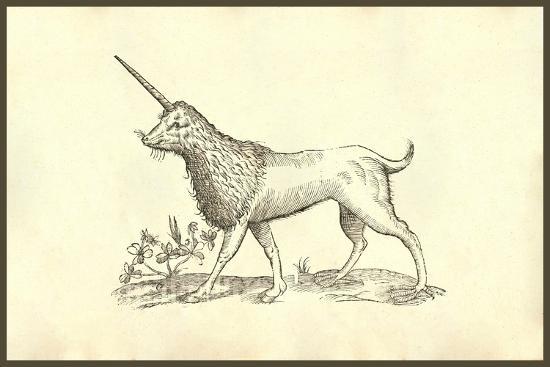 Unicorn (Camphurch Effigies)-Ulisse Aldrovandi-Art Print