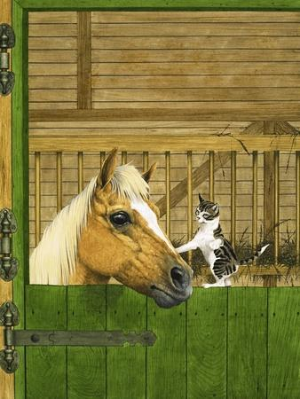 Unidentified Horse and Playful Kitten--Giclee Print