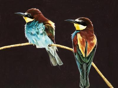 Unidentified Pair of Birds--Giclee Print