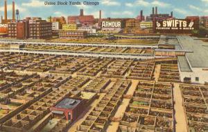 Union Stockyards, Chicago, Illinois