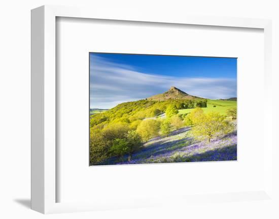 United Kingdom, England, North Yorkshire, Great Ayton. Spring Bluebells at Roseberry Topping.-Nick Ledger-Framed Photographic Print